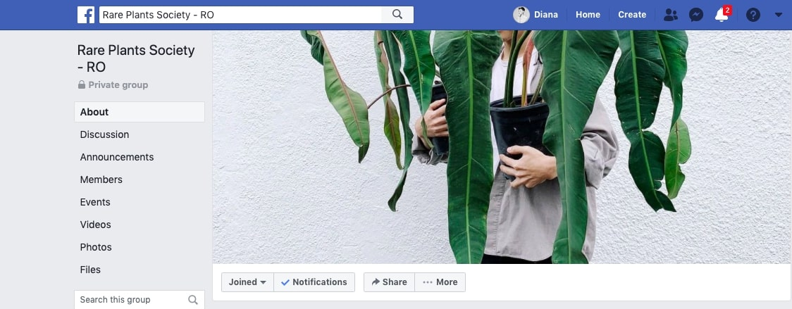 "#prieteniiverziaidianei 12: Despre grupul de plant lovers/collectors/freaks ""Rare Plants Society – RO"""